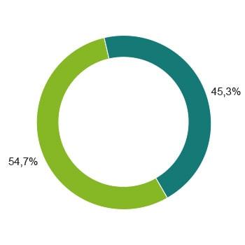 Strommix Ökostrom Zusammensetzung Diagramm