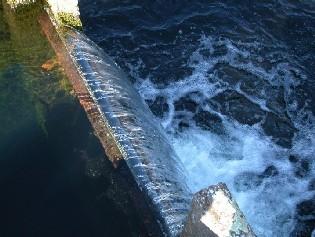 Bild Wasserwerk Einlaufbauwerk